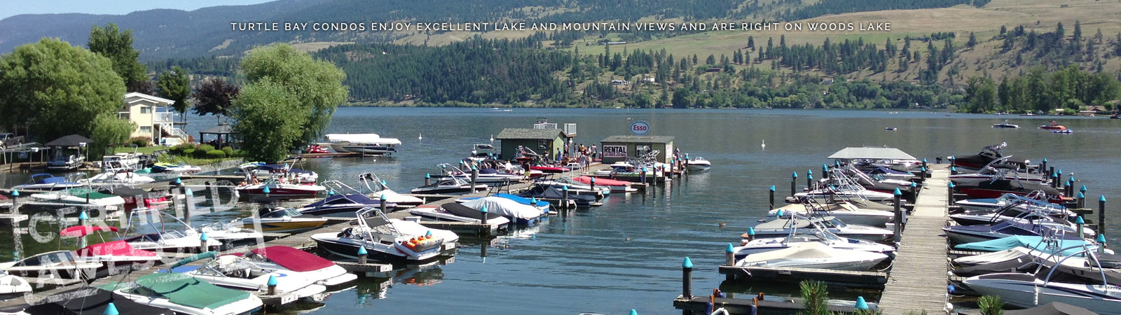 View of Boat Rentals on Woods Lake